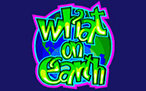 what-on-earth