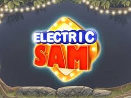 Electric Sam Slots Pay by Phone Bill