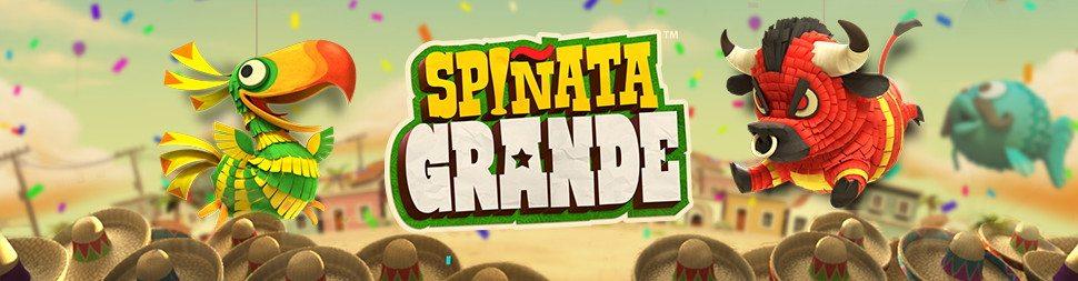 Spiñata Grande™
