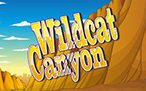 Wild Cat Canyon