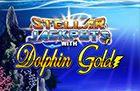 Dolphingold Stellar Jackpot